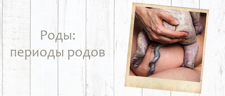 Как женщины рожают детей. Периоды родов