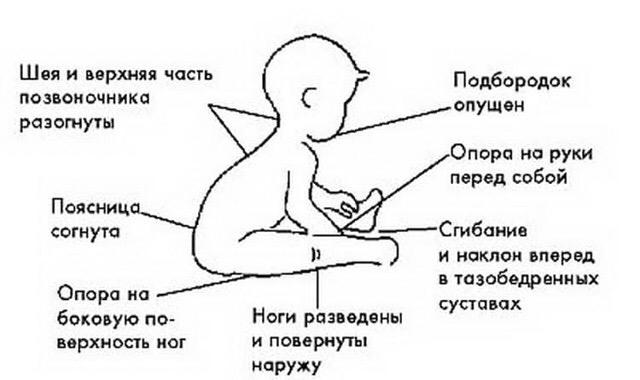 сидит малыш