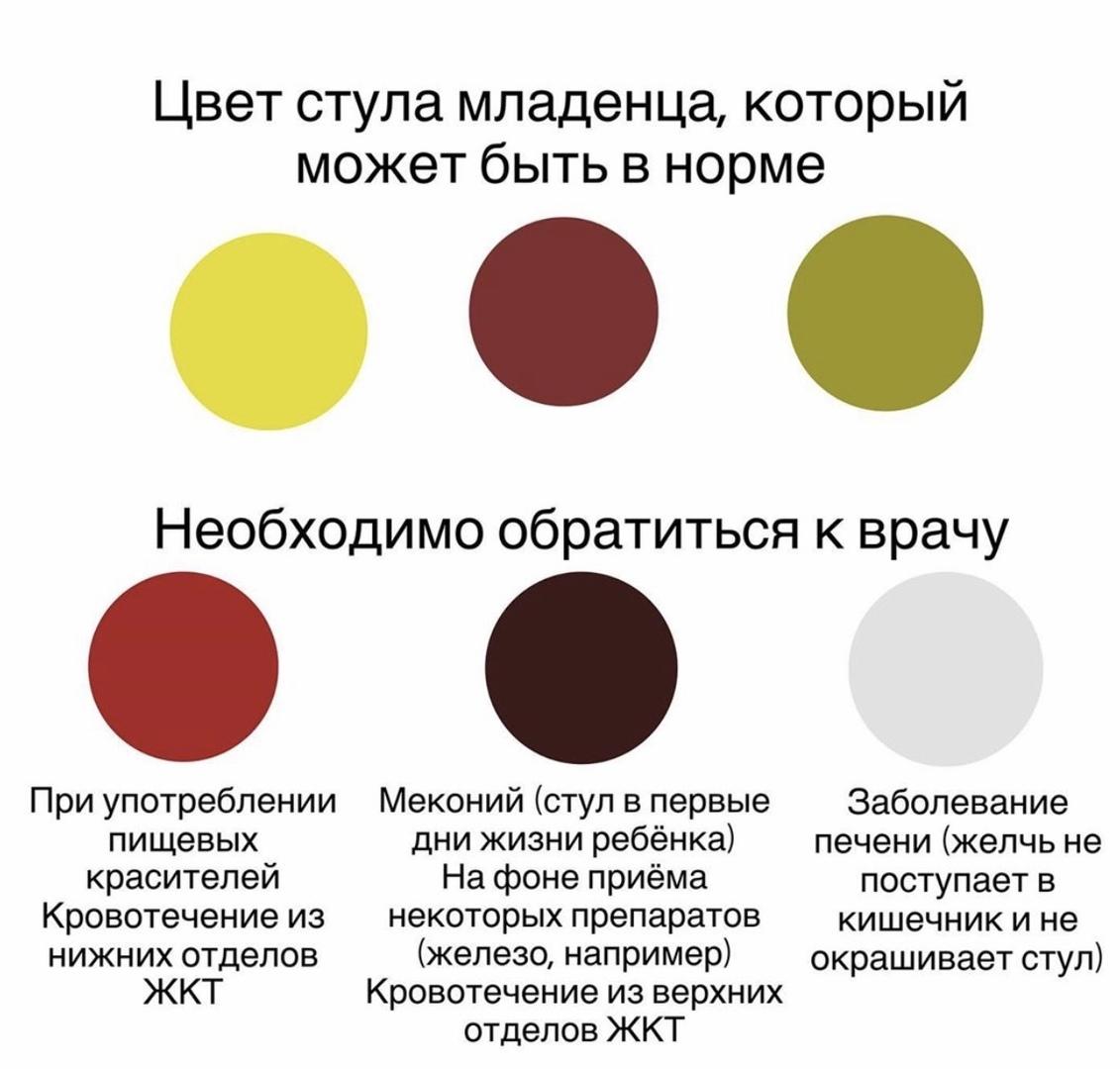 цвет стула
